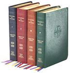 Liturgy of the Hours - 4 Volume set - Vinyl Softback Edition