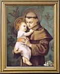 St. Anthony of Padua Gold Framed Print 13 x 15.5