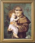 St. Anthony of Padua Gold Framed Print 13 x 15.5