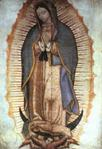 Our Lady of Guadalupe Canvas Print 39 3/4 Inches x 65 Inches